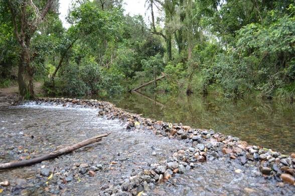 Amamoor Creek - Dam Built