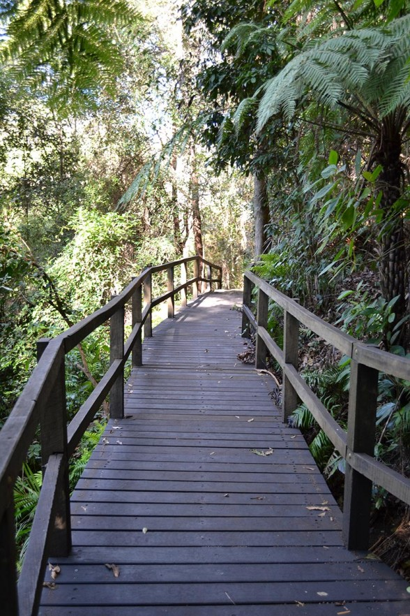 Cania Gorge - Boardwalk