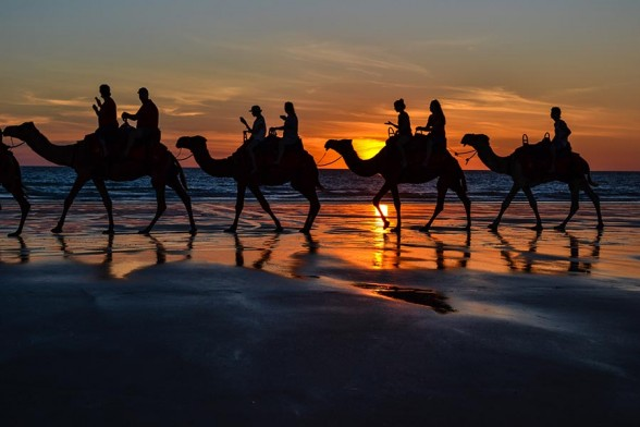 Broome, Camels Sunset