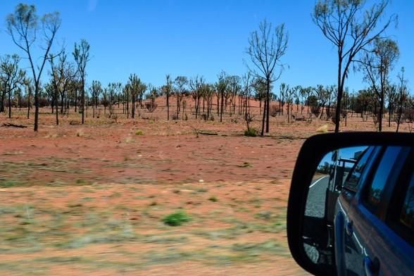 Uluru, Bushfire Devastation